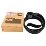 3106099 - V RIBBED BELT